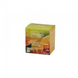 Herbata Simon Levelt Mango & Orange BIO 17,5 g